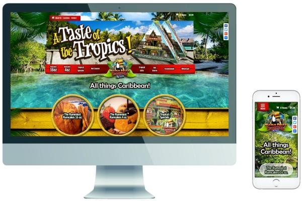 Ecommerce SSL Responsive Website Development & Management - Therummiest